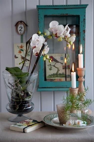 orquídeas artificiais