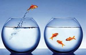 Change: fish reform