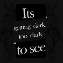 Its getting dark, too dark to see