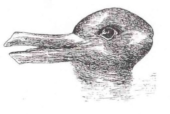 The Duck-Rabbit Illusion Paradigm shift