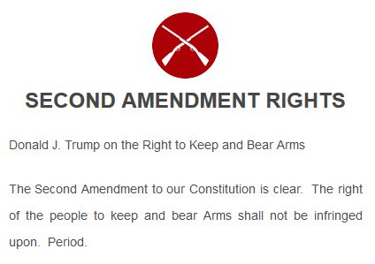 Trump's platform: guns