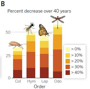 Figure 1B from Dirzo (2014) in Science.
