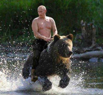 Putin Riding Bear