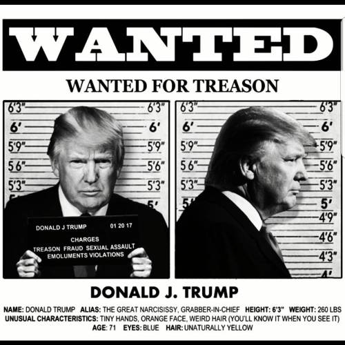 Trump poster: wanted for treason