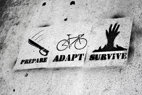 Prepare Adapt Survive