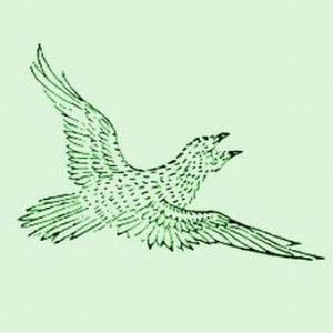 Jiān bird