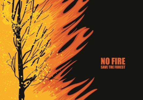 No Fires In Australia - AdobeStock-320516528
