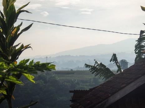 Pemandangan lembah di pagi hari dilihat dari depan rumah