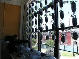 Aquaponics agricultura en la ventana, GreenFab Nueva York