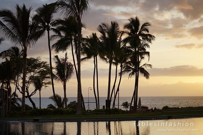 Maui Tropical