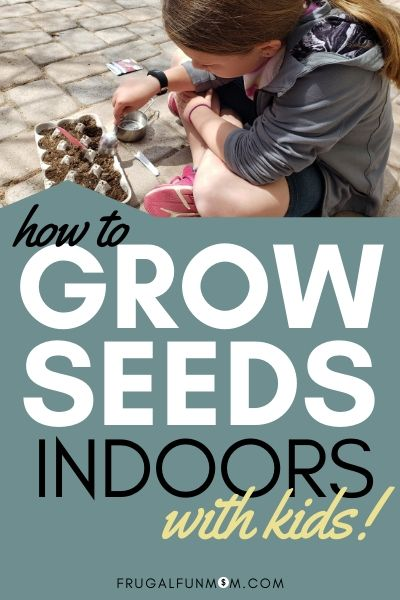 How To Grow Seeds Indoors With Kids! | Frugal Fun Mom