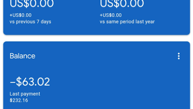 What is the meaning of negative earnings minus — in Adsense?