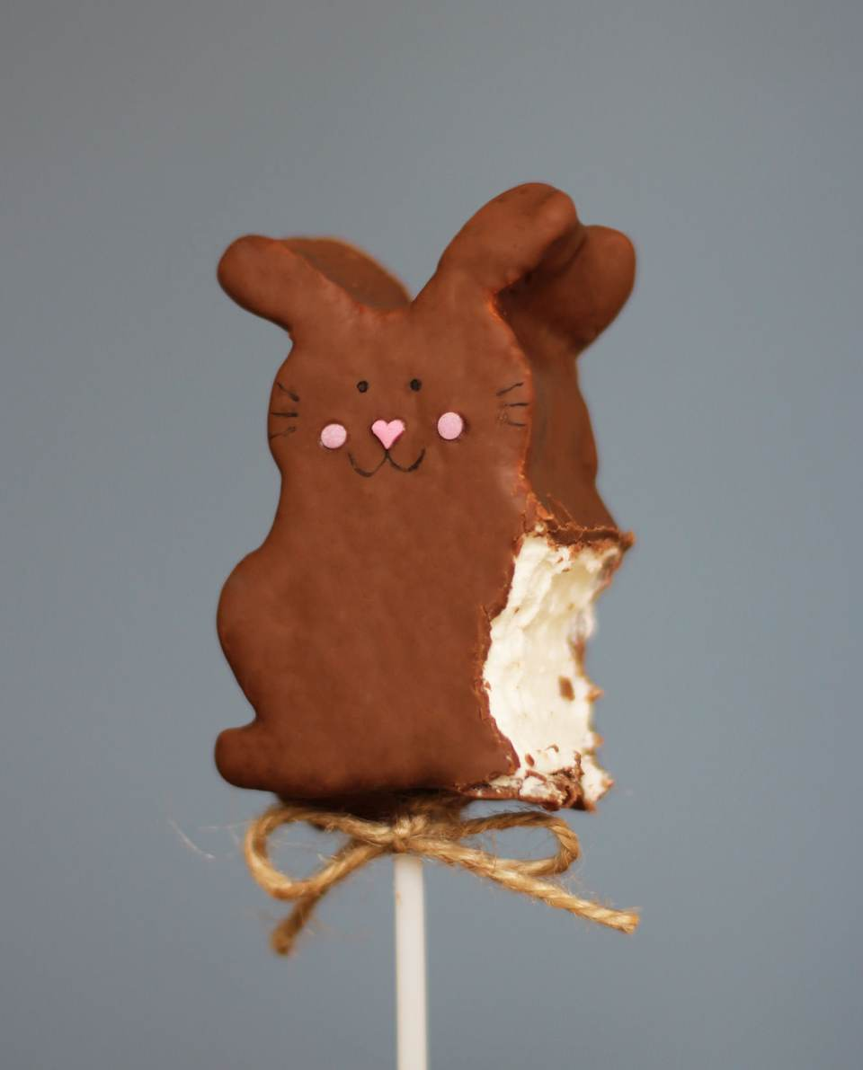 caramel-chocolate-marshmallow-bunny-pops-recipe-10