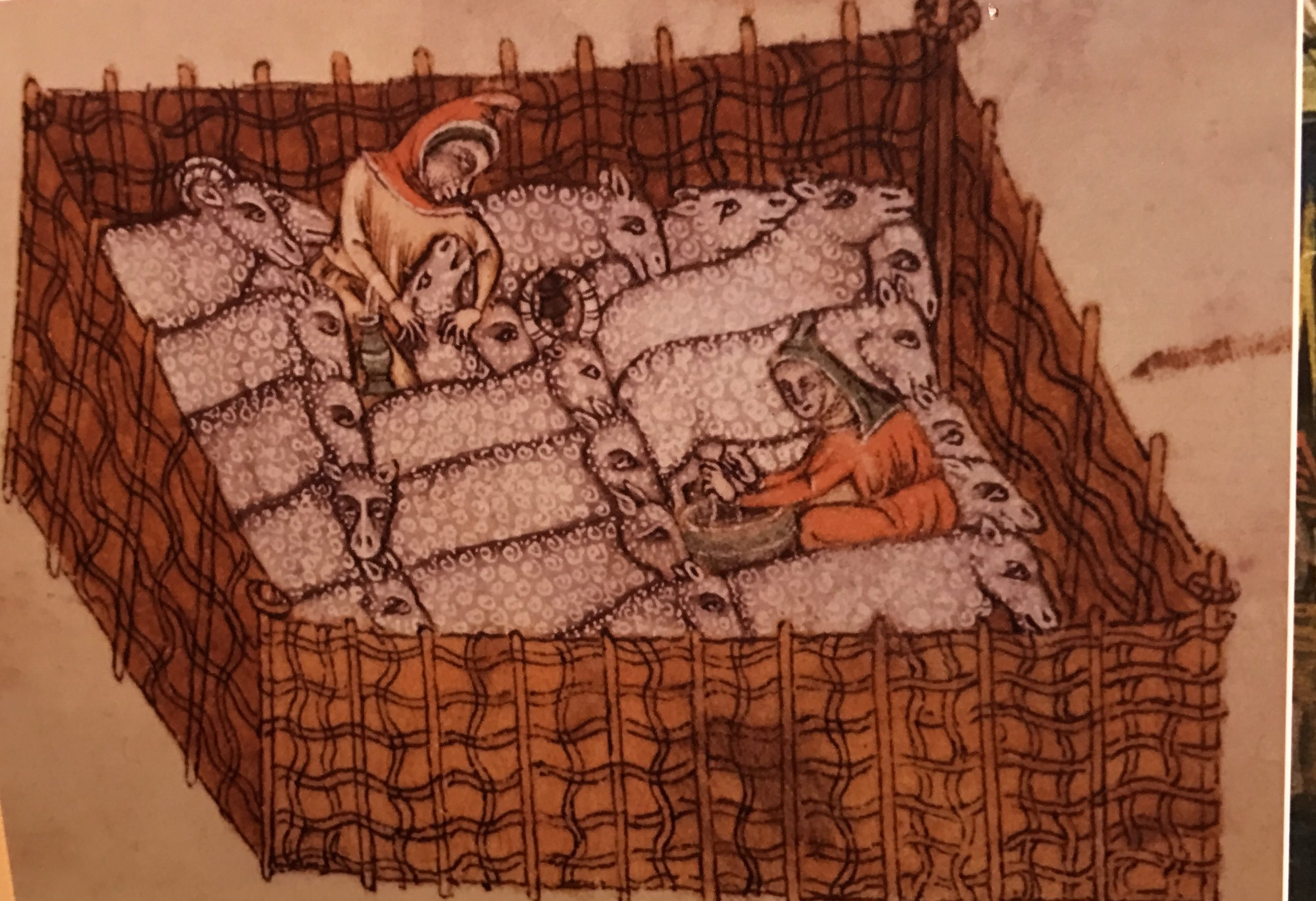 Sheep in a pen (exhibit in the Cirencester museum)