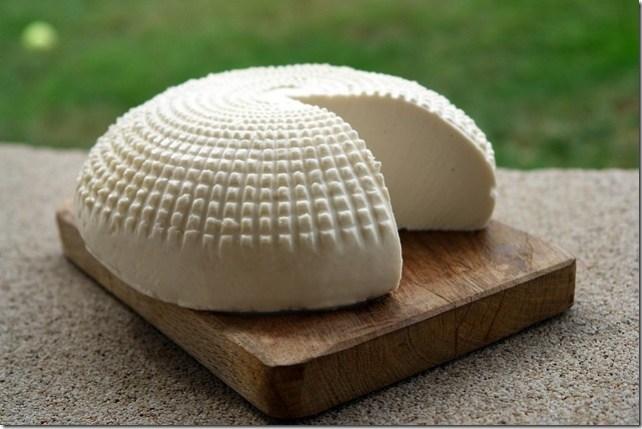facteurs de coagulation du lait fabrication fromage