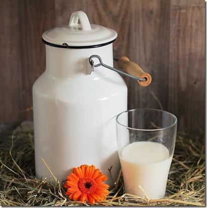 influence alimentation sur coagulation du lait