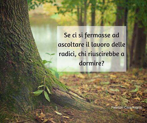 Frasi E Aforismi Sulle Radici Fabrizio Caramagna