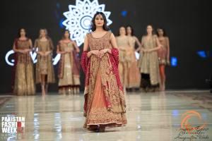 Aisha Imran (2)