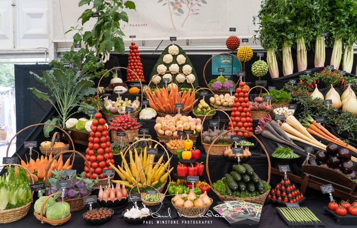 Rhs chelsea flower show 2021 fun and fascinating facts & stats! (1)