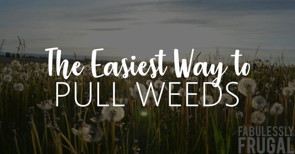 The easiest way to pull weeds