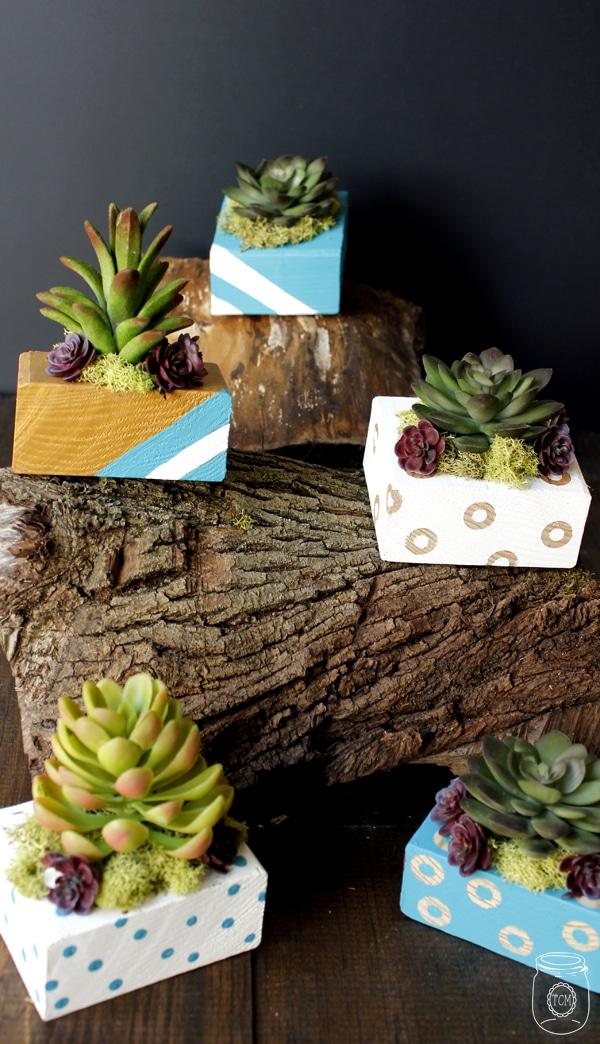 DIY succulent planter box