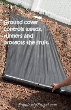 Covering ground with landscapers fabric