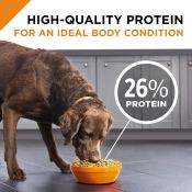 Amazon: Purina Pro Plan Dog Food 35-Pound Bag as low as $41.20 (Reg. $49)...