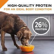 Amazon: Purina Pro Plan Dog Food 35-Pound Bag as low as $41.20 (Reg. $49)...