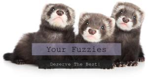 Your Fuzzies Deserve The Best