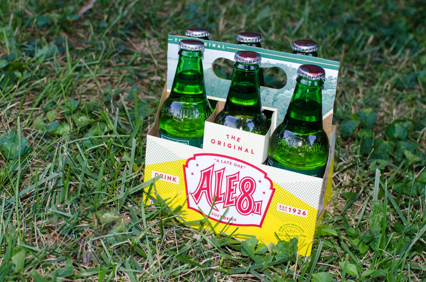 ale8-6pack