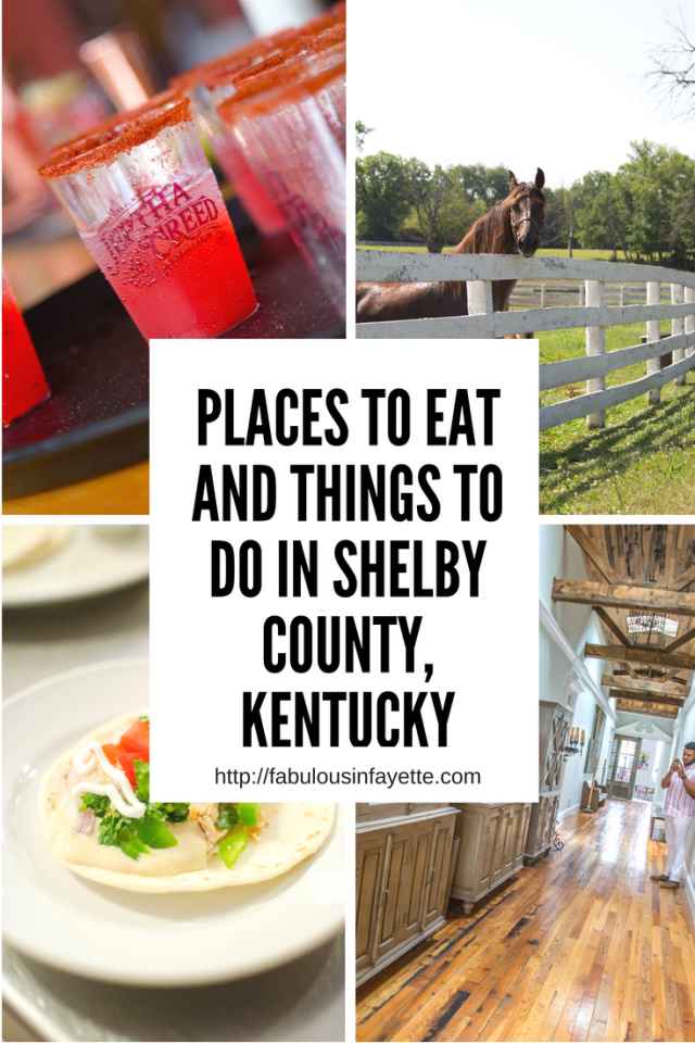 Back in June, I worked with Shelby County Tourism to explore what all Shelby County had to offer. To be honest, I really hadn't spent too much time in Shelby County, or even Shelbyville, except for the events that I've attended at Jeptha Creed. Shelbyville is a short drive from Lexington (only about 45 minutes). If you look around wherever you live, whether it's the city you live in or another state, you can find hidden gems where you may least expect it! #visitshelbyky #travelky #travel #horses #kentucky #tasteky #food #eatkentucky #shelbycounty #shelbyville