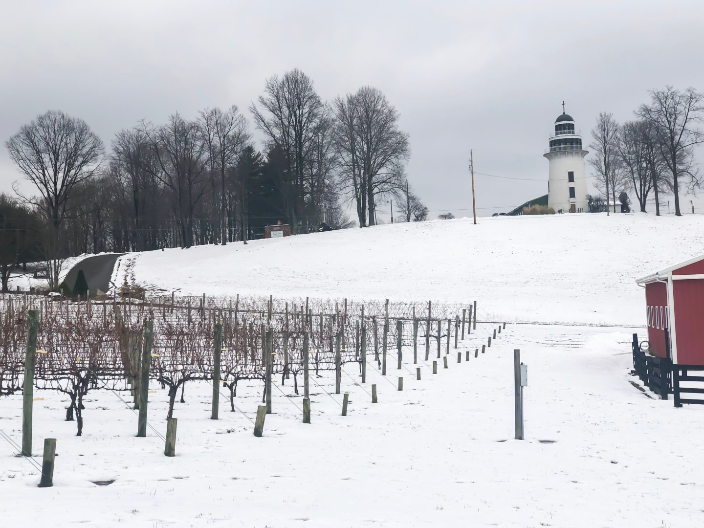 I'm sure when you think of wine and wine country, Napa Valley, California comes to mind. However, Ohio is the sixth largest producer of wine in the country. Upon further research, I've discovered that Coshocton, Ohio was the number one wine destination in 2018. I visited and got to see the beauty the area has to offer, along with learning about wine from the wineries. Looking for somewhere to eat or attractions in the area? Check out the travel guide to Coshocton! Heritage Hill is an award-winning winery! #sponsored #coshco #coshocton #ohio #visitohio #travel #winery #wine #winetasting #amishcountry #cochoctonohio #ogic #grapes
