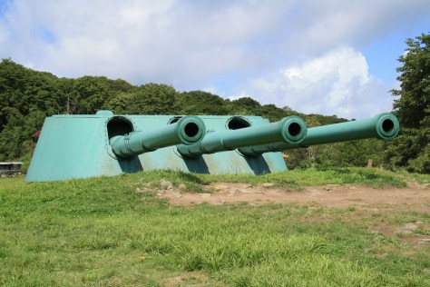 Cannons - Russky Island