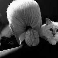 The Fabulous journal of Karl's « Choupette »!