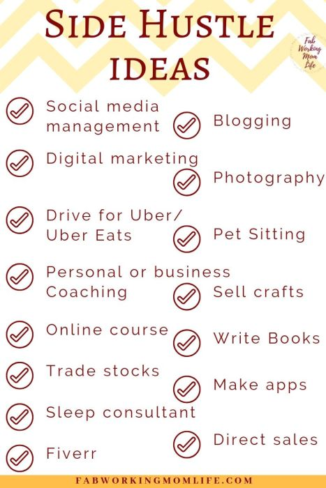Side Hustle Ideas Infographic