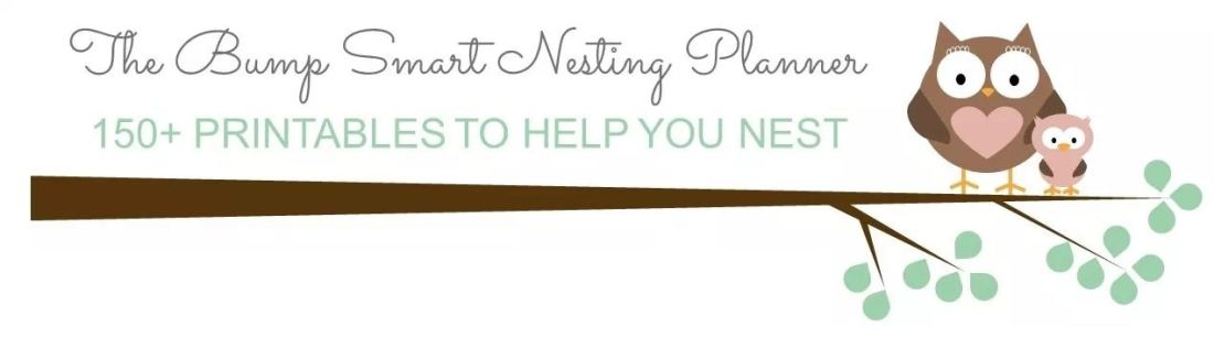 Nesting Planner for Pregnant Moms to Be
