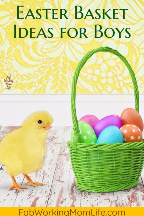 Easter basket ideas for boys   Fab Working Mom Life