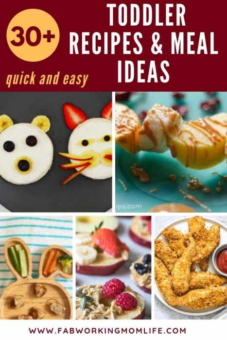 If you're searching for quick and easy toddler recipes and toddler meals for picky eaters you've got to check out this post! This roundup contains healthy toddler meal ideas as well as finger foods for toddlers and 1-year-old meal ideas. Keep reading for your toddler meal plan for quick dinner ideas for toddlers!