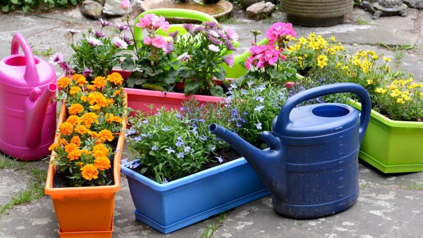 comment composer une belle jardiniere