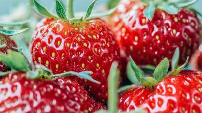 Mures Groseilles Cassis Myrtilles Comment Enlever Une Tache De Fruits Rouges Femme Actuelle Le Mag