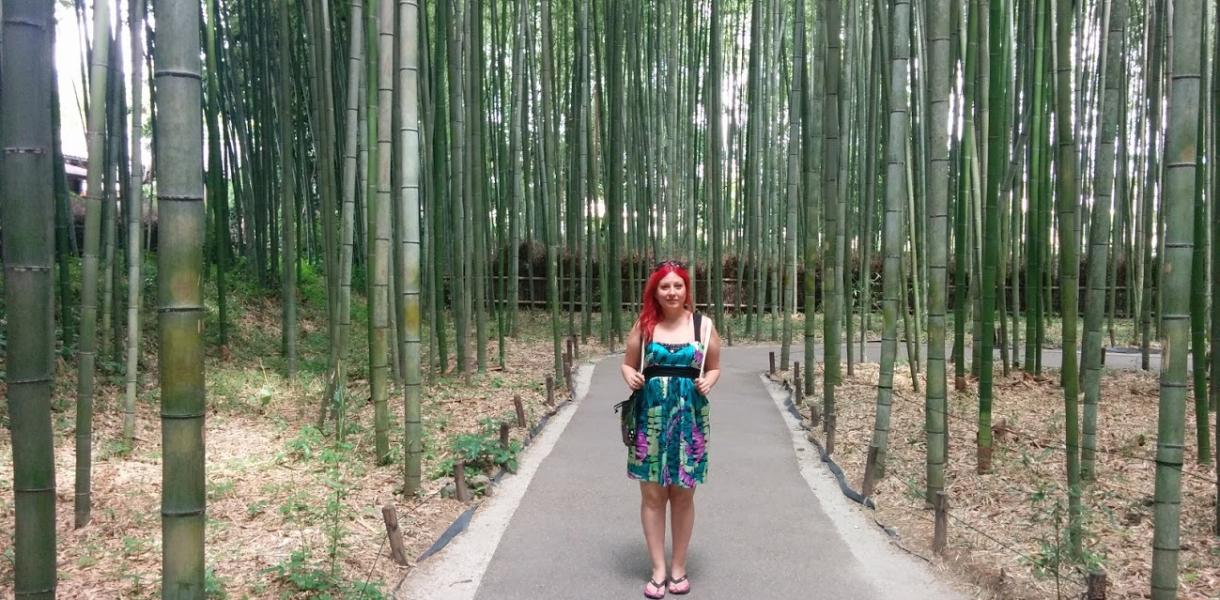10 cose da fare in giappone, faccio come mi pare, viaggio in giappone, expat blog, blog viaggi, foresta di bamboo,