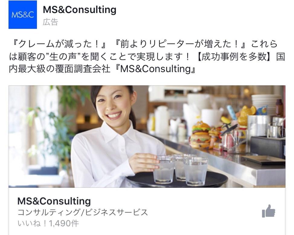 MSConsuluting