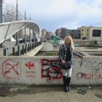 Драгана Трифковић: Зашто нам није потребан унутрашњи дијалог о Косову