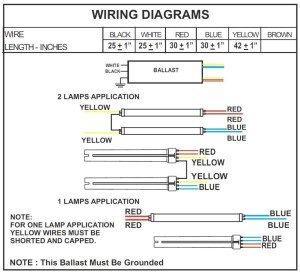 2 Lamp T12 Ballast Wiring Diagram Collection | Wiring