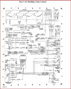 Panduit Cat6 Jack Wiring Diagram Gallery | Wiring Diagram Sample