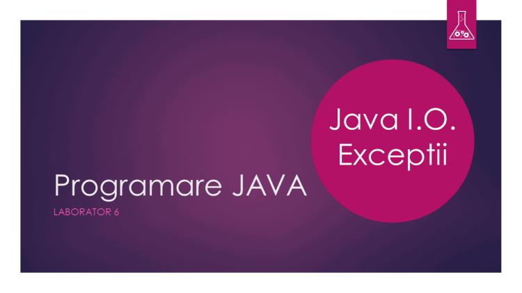 Programare Java - Laborator 6