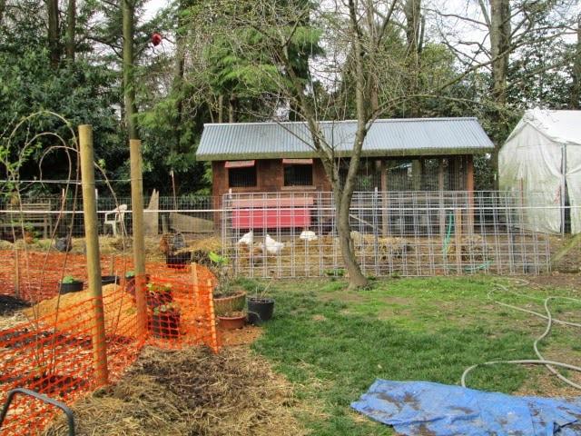 Red Truck Homestead Chicken House