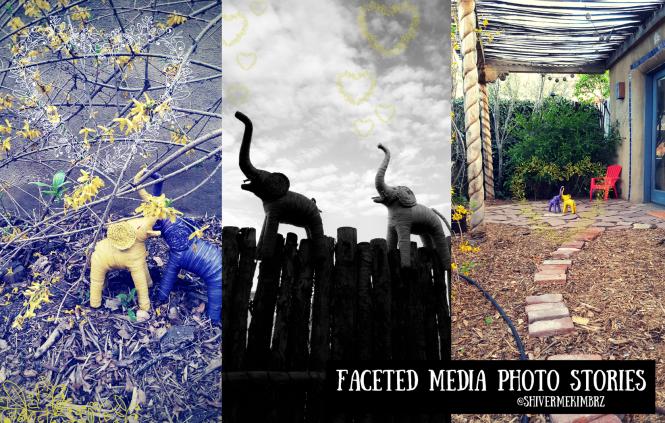 visual storytelling, elephants, marketing, faceted media, kim johnson, pr, guerrilla marketing