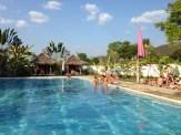 Fluid, the farang party pool.