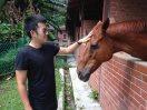 Chu loves the horses.